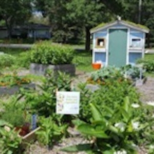 glendale-elementary-school-garden